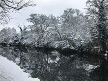 A Canal Side In Snow