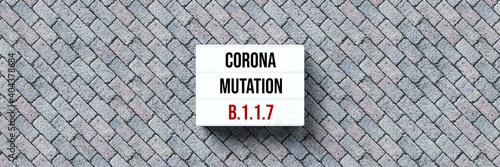 Obraz na plátně lightbox with message CORONA MUTATION B117 on stone pavement background