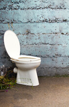 Abandoned Toilet Bowl Against Wall