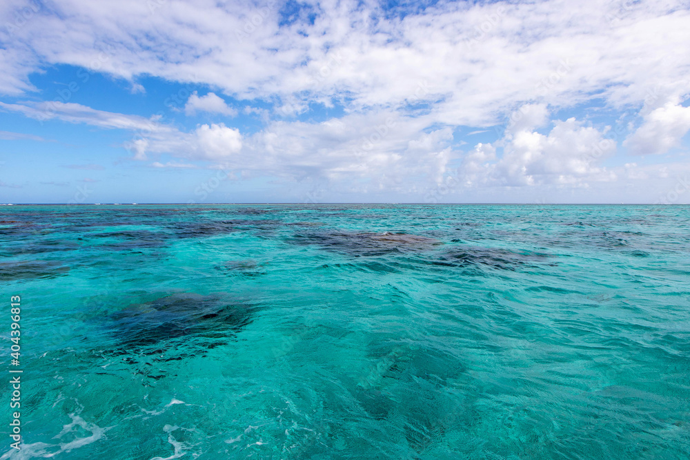 Fototapeta Dark clusters of the coral reef seen under clear turquoise water in the South Pacific ocean near Bora Bora and Tahiti under a vibrant blue sky with puffy white clouds