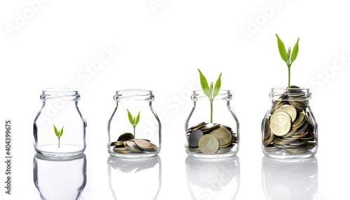 Obraz Coins And Plants In Jars Over White Background - fototapety do salonu