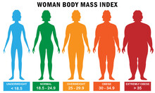 Woman Body Mass Index Vector Illustration
