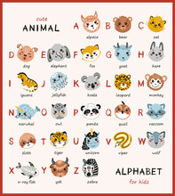Cute Animal Alphabet For Kids. Cartoon English Alphabet For Children. Hand Drawn Lovely Baby Animals Faces With Doodle Latin Letters And Names. Childish Vector ABC Poster For Preschool Education