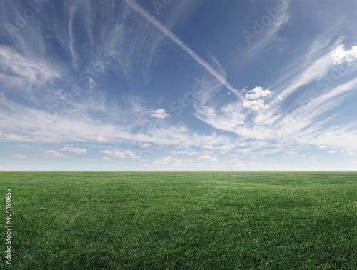 Fototapeta Image of green grass field and cloudy sky obraz