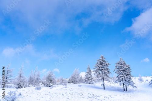 Fotografiet 【冬イメージ】厳しい冬