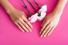 Top View Of Female Hands With Shiny Fingernails And Carnation Flowers On Pink Background