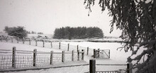 Heavy Snowfall Sweeps Across The Yorkshire Smallholding At 900ft And Transforms The Moorland Pasture