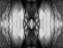Monochrome Fragmented Kaleidoscopic. Abstract Lines Painting. Marble Swirl Design. Monochrome Kaleidoscope Food. Monochrome Stained Glass Windows. Marble Grunge. Stirring Paint.