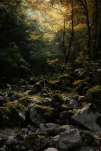 Luoghi Incontaminati Nel Parco Nazionale D'abruzzo