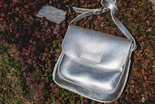 Festive Evening Small Silver Bag. Luxury Accessories And Party Concept.