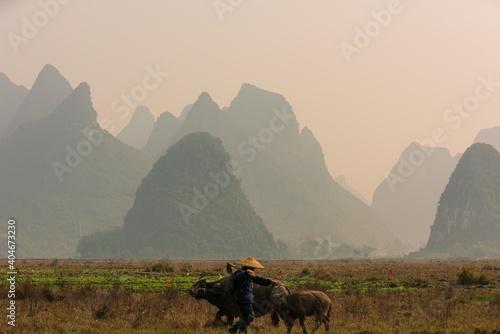Fotografie, Obraz China's natural landscape
