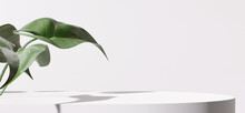 White Product Display Podium With Nature Leaves. 3D Rendering