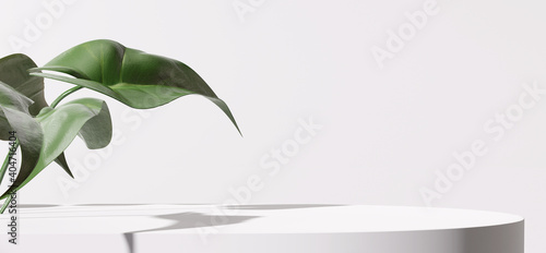Obraz White product display podium with nature leaves. 3D rendering - fototapety do salonu