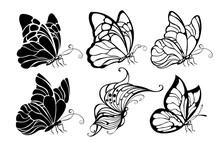 Seated Butterflies