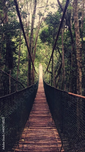 Canvas-taulu Wooden Footbridge In Forest