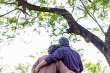 Happy Old Asian Couple Under Tree Old Man And Old Woman Or Grandfather And Grandmother Embracing Each Other With Love Elderly Husband Hug Old Wife And Spending Time Together With Happiness Health Care