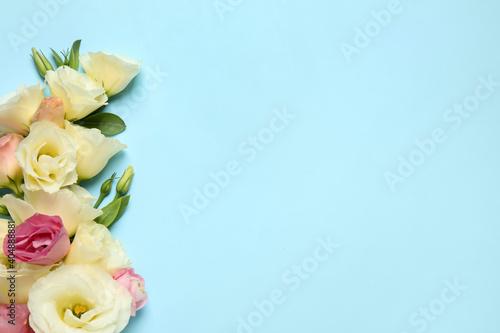 Obraz na plátně Beautiful Eustoma flowers on light blue background, flat lay