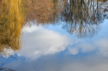 Reflections Of Bare Trees And Blue Sky With Clouds On The Water Surface Of A Pond, Rural Winter Landscape