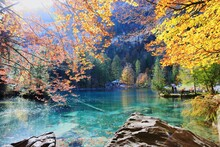 Scenic View Of Lake By Trees During Autumn