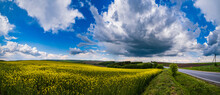 Road Through Spring Rapeseed Yellow Blooming Fields Panoramic View, Blue Sky With Clouds In Sunlight. Natural Seasonal, Good Weather, Climate, Eco, Farming, Countryside Beauty Concept.