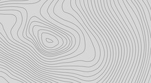 The Stylized Height Of The Topographic Contour In Lines And Contours. The Concept Of A Conditional Geography Scheme And The Terrain Path. Black On Gray. Ultra Wide Size. Vector Illustration.