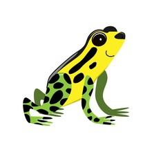 Cute Cartoon Flat Poison Frog From Side, Vector Isolated On White, Illustration For Children