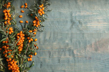Branches Of Sea Buckthorn On Blue Wooden Table, Flat Lay. Space For Text