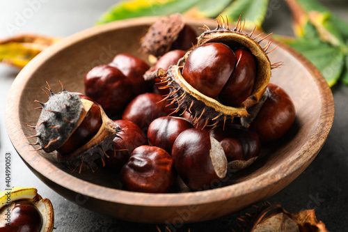 Horse chestnuts in wooden bowl on table, closeup view