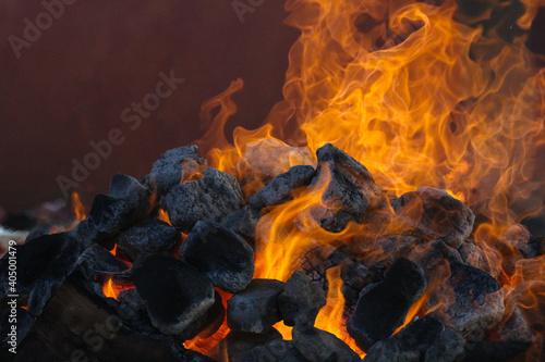 Photo Fuego
