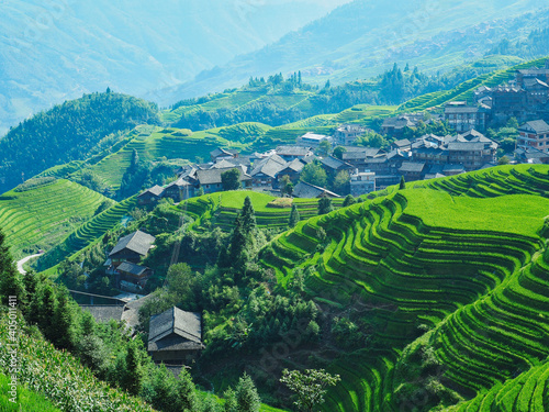 Scenic View Of Agricultural Field Fototapet