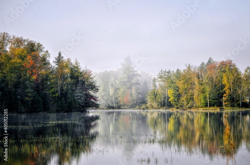 Fototapety, obrazy: Scenic View Of Lake By Trees Against Sky