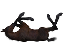 3d Render Of A Young Foal