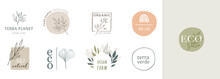 Collection Of Delicate Hand Drawn Logos And Icons Of Organic Food, Farm Fresh And Natural Products, Elements Collection For Food Market, Organic Products Promotion, Healthy Life And Premium Quality