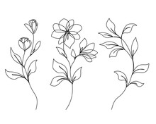Flowers And Leaves Vector One Line Drawing Set. Botanical Modern Single Line Art, Aesthetic Contour. Perfect For Home Decor, Wall Art Posters, T-shirt Print, Mobile Case. Continuous Line Drawing