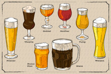A Set Of Different Types Of Beer Glasses. Hand Drawn Vector Multicolor Illustration.