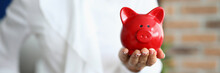 Close-up Of Person Holding Red Piggy Bank On Hand. Symbol For Money And Savings. Adult Wearing White Stylish Shirt And Posing In Cabinet. Economy And Success Concept