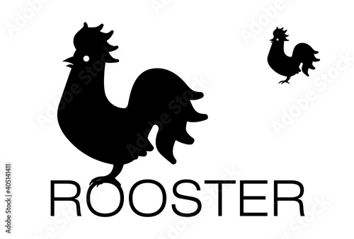 Slika na platnu Rooster is a flightless bird