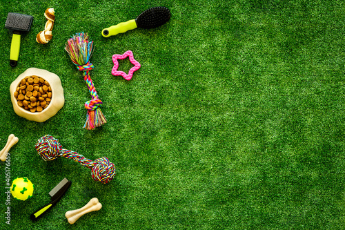 Pet supplies on backyard grass, toys and food for cats and dogs, top view