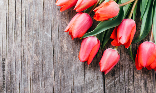 Fotografie, Obraz Pink tulips bouquet border on vintage wooden background from above
