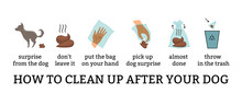 Dog Poo Clean Up Steps Infographic Set. Vector Poster About Hygiene Animal, Toilet Cleaning Information After Your Dog Step By Step. Picking Waste In Canine Bag And Throw In The Trash