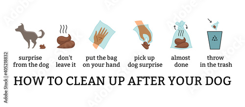 Photo Dog poo clean up steps infographic set
