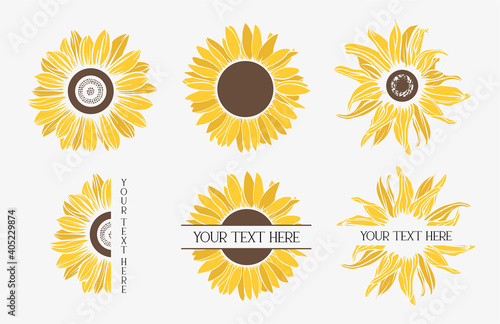 Fototapeta Color sunflowers set. Flower border.