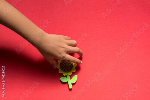 Obraz na plátně Cropped Hand Holding Floral Decoration On Red Background