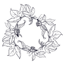 A Wreath Of Leaves And Branches Of Passion Fruit.