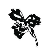 Vector Flower Logo. Floral Background. Calligraphy Ink. Stylized Calligraphic Ink Iris.