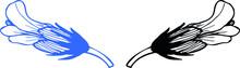Contour Line, Sketch, Flower (corolla) Of The Medicinal Plant Avran Medicinal