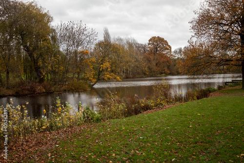 Fotografie, Obraz Autumn in Park Markeaton in England
