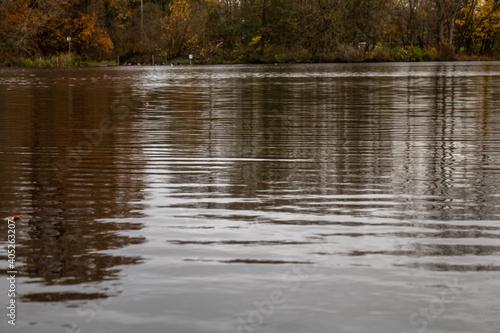 Fotografia Autumn in Park Markeaton in England