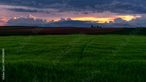 Fototapety, obrazy: Scenic View Of Agricultural Field Against Sky During Sunset