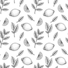 Hand Drawn Seamless Pattern With Lemon Fruit And Leaves. Vector Illustration In Sketch Style